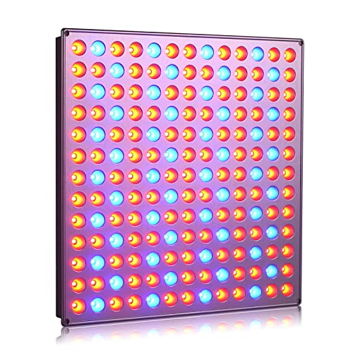 Red and Blue Grow Light Panel