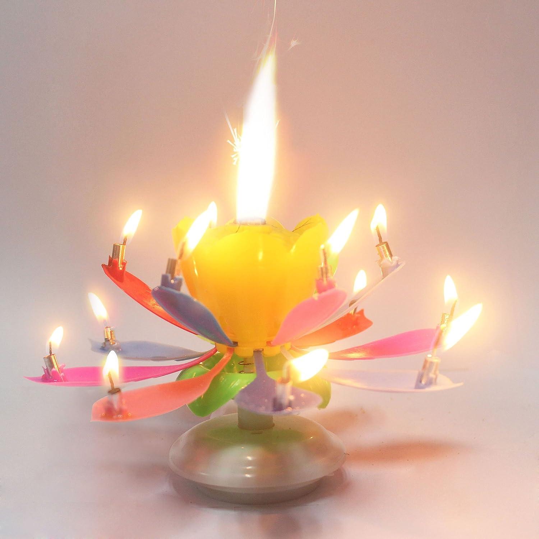 Amazing Birthday Candles Flower Battery Powered Straightener
