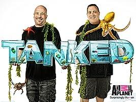 Tanked Season 2