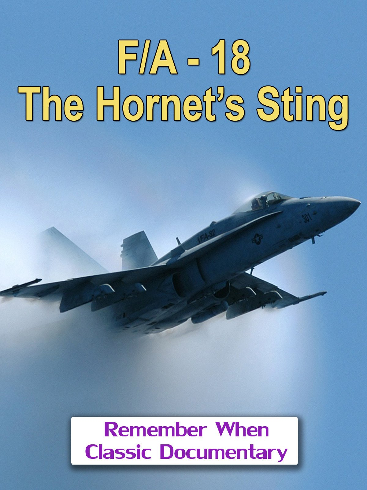 F/A-18, The Hornet's Sting