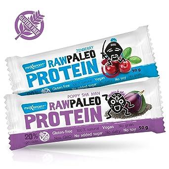 Maxsport Nutrition Roh Paleo Vegan Glutenfrei Protein Rohkost Riegel - Plant Protein, Kokosöl, Chia seeds, 50g x 20 Stuck (Raw Protein Mix)