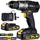 Cordless Drill/Driver 20V Max, TECCPO 530 In-lbs Power Drill with 2pcs 2.0Ah Batteries, 1/2