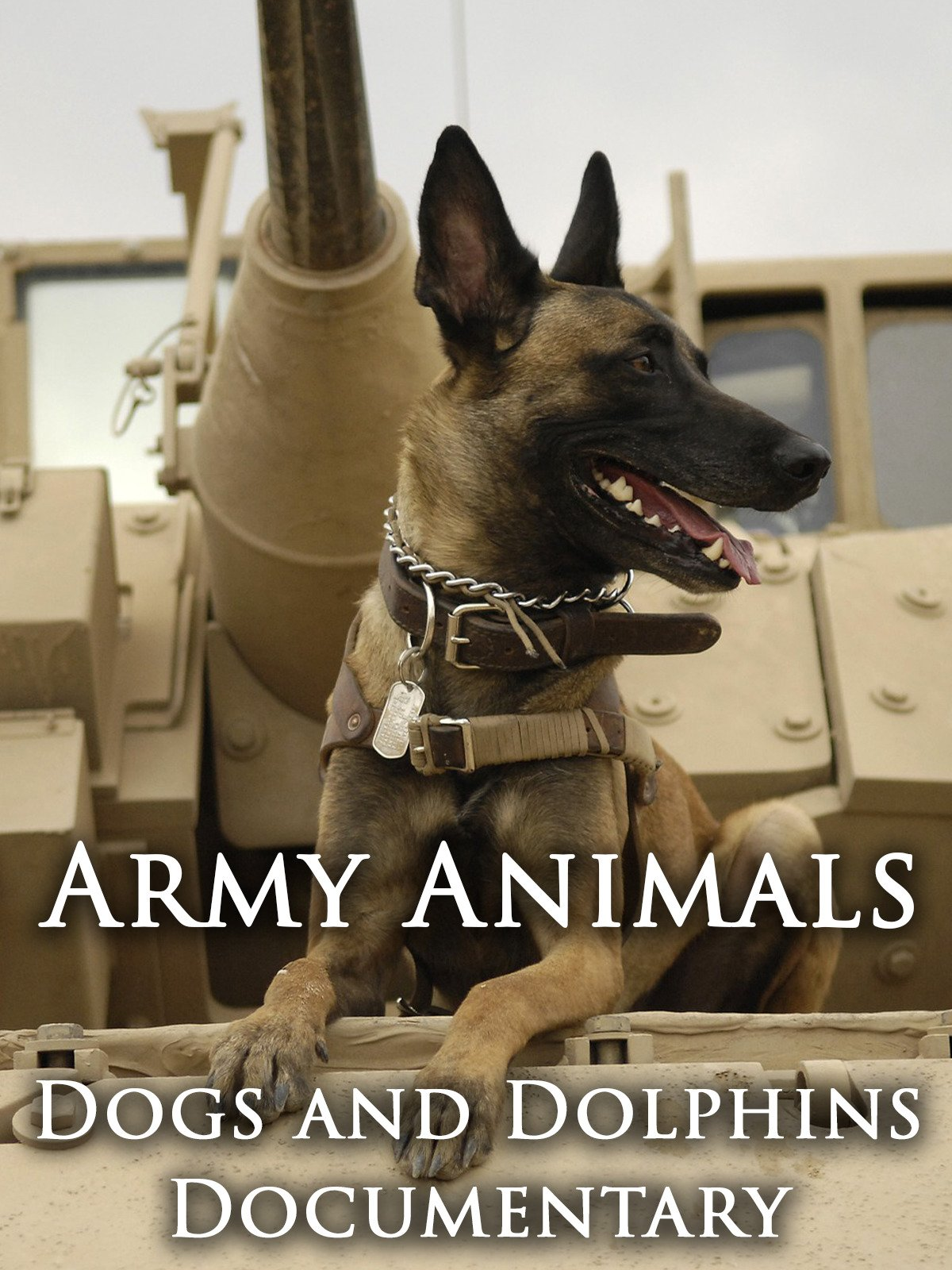 Army Animals: Dogs and Dolphins Documentary