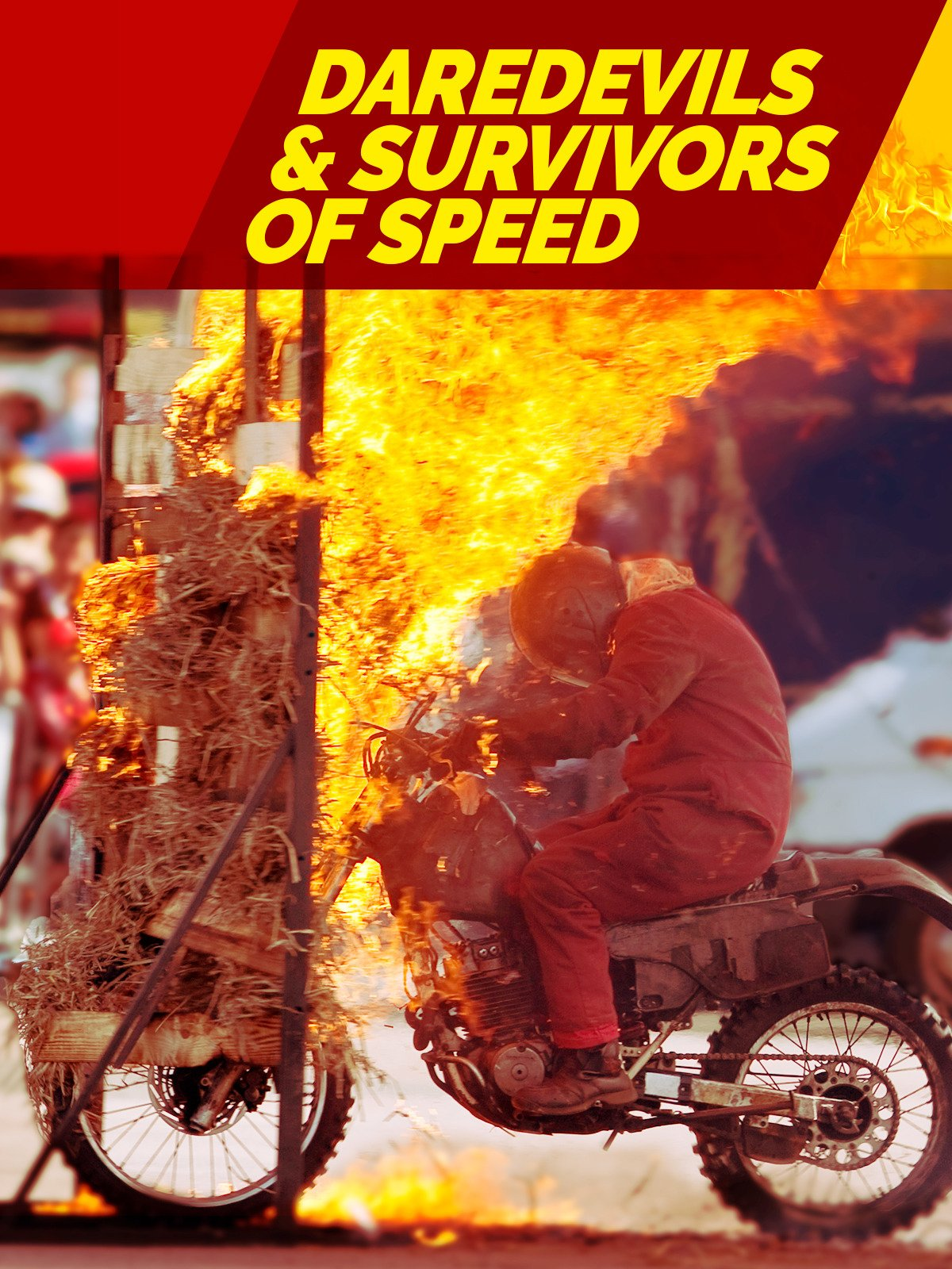 Daredevils & The Survivors of Speed