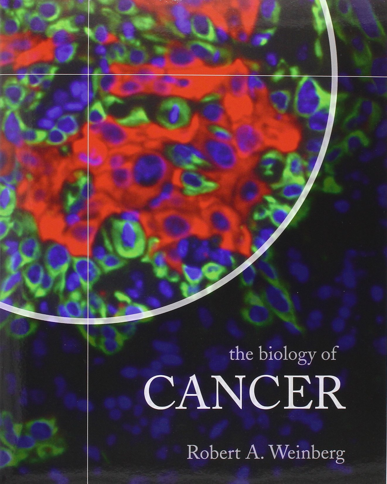 essay about cancer biology