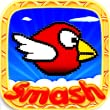 Birds Smash - Fun and Cool Game for Boys, Girls, Kids! New best games for free!  (Pocked Edition PE)