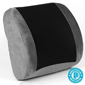 Perfect Posture Lumbar Support Cushion width=