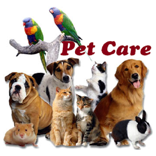 Pet Or Animal Or Dog Or Cat Site Com