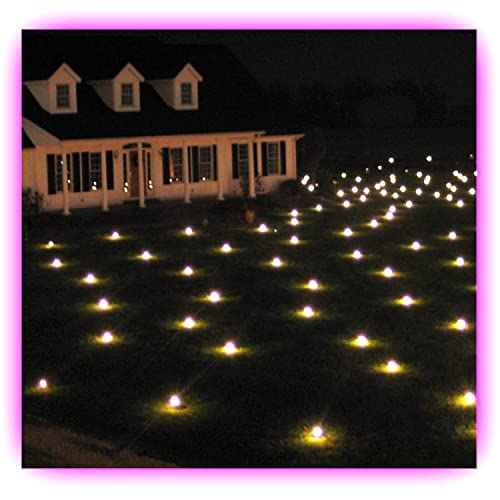 Christmas LED Lawn Lights