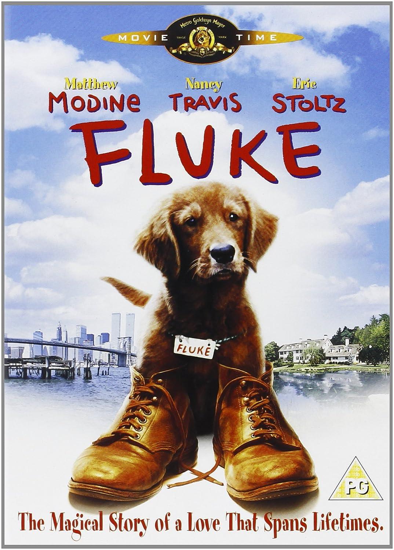 Mi amigo Fluke | Fluke | 1995 | HDTV | 720p | Latino