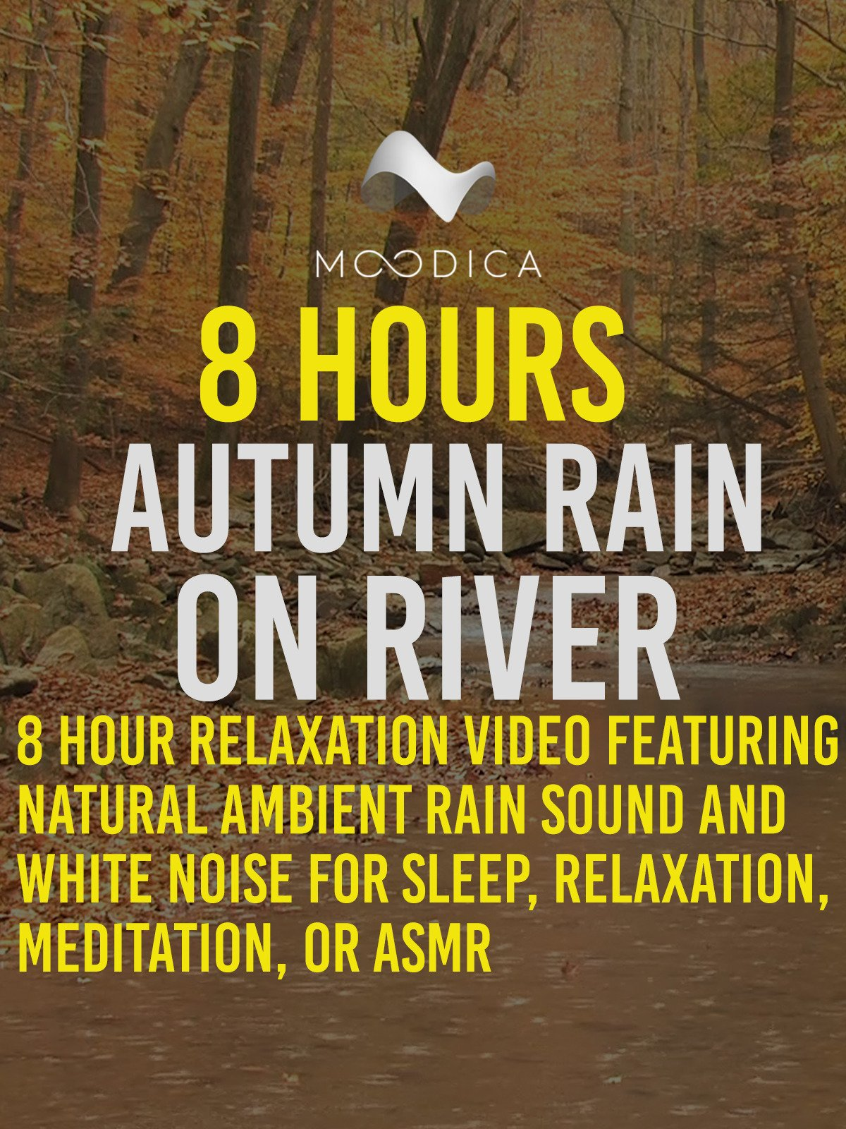 8 Hours: Autumn Rain On River: 8 Hour Relaxation Video Featuring Natural Ambient Rain Sound and White Noise for Sleep, Relaxation, Meditation or ASMR