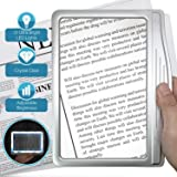 MagniPros 3X Large Ultra Bright LED Page Magnifier with 12 Anti-Glare Dimmable LEDs (Provide More Evenly Lit Viewing Area & Relieve Eye Strain)-Ideal for Reading Small Prints & Low Vision (Color: Silver, Tamaño: 8