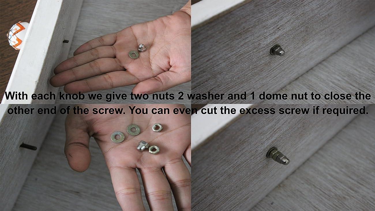 Set of 10 Handmade Glass Knobs Clear Vintage Designer Flower Shape Furniture Handle Cabinet Drawer Pull Silver Finish 1