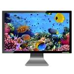 PG Aquarium on TV
