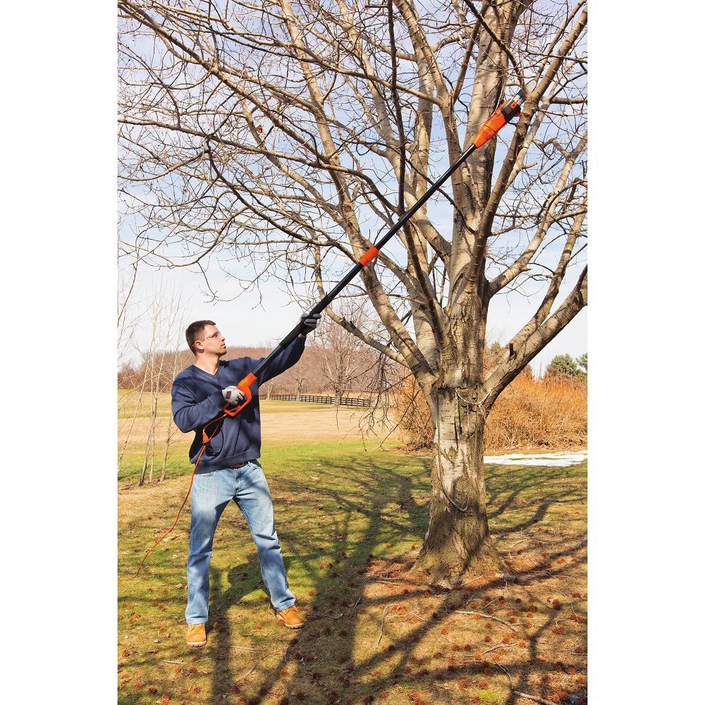 BLACK+DECKER PP610 6.5-Amp Corded Pole Saw, 10-Inch via Amazon