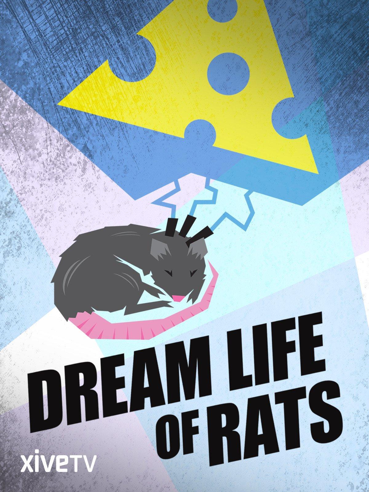 Dream Life of Rats