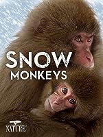 Nature: Snow Monkeys [HD]