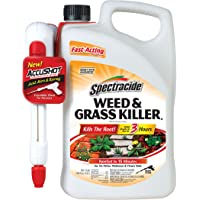 Spectracide Accushot Sprayer 1.3-Gallon Weed and Grass Killer + Refill 1-Gallon Weed