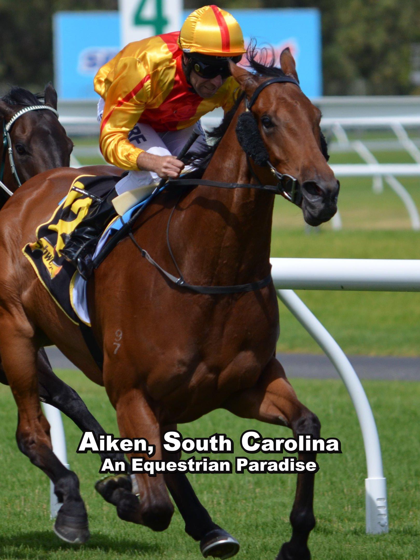 Aiken, South Carolina: An Equestrian Paradise