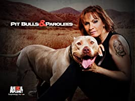 Pitbulls and Parolees Season 3