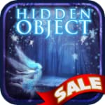 Hidden Object - Deep in the Fairy Forest