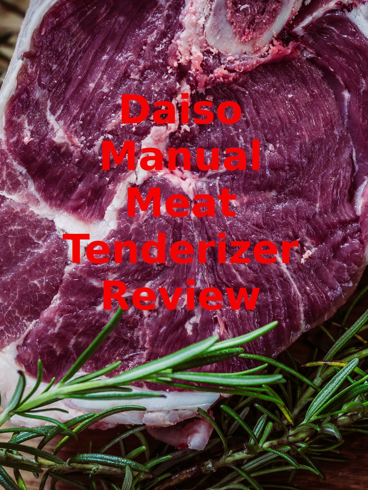 Review: Daiso Manual Meat Tenderizer Review