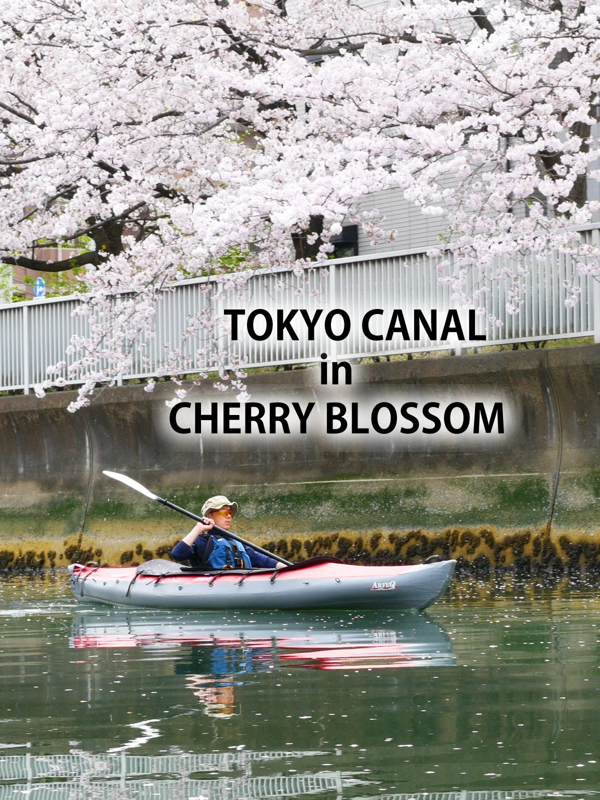 Tokyo Canal in Cherry Blossom on Amazon Prime Instant Video UK