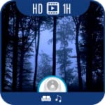 Dark Forest HD Gothic & Ambient