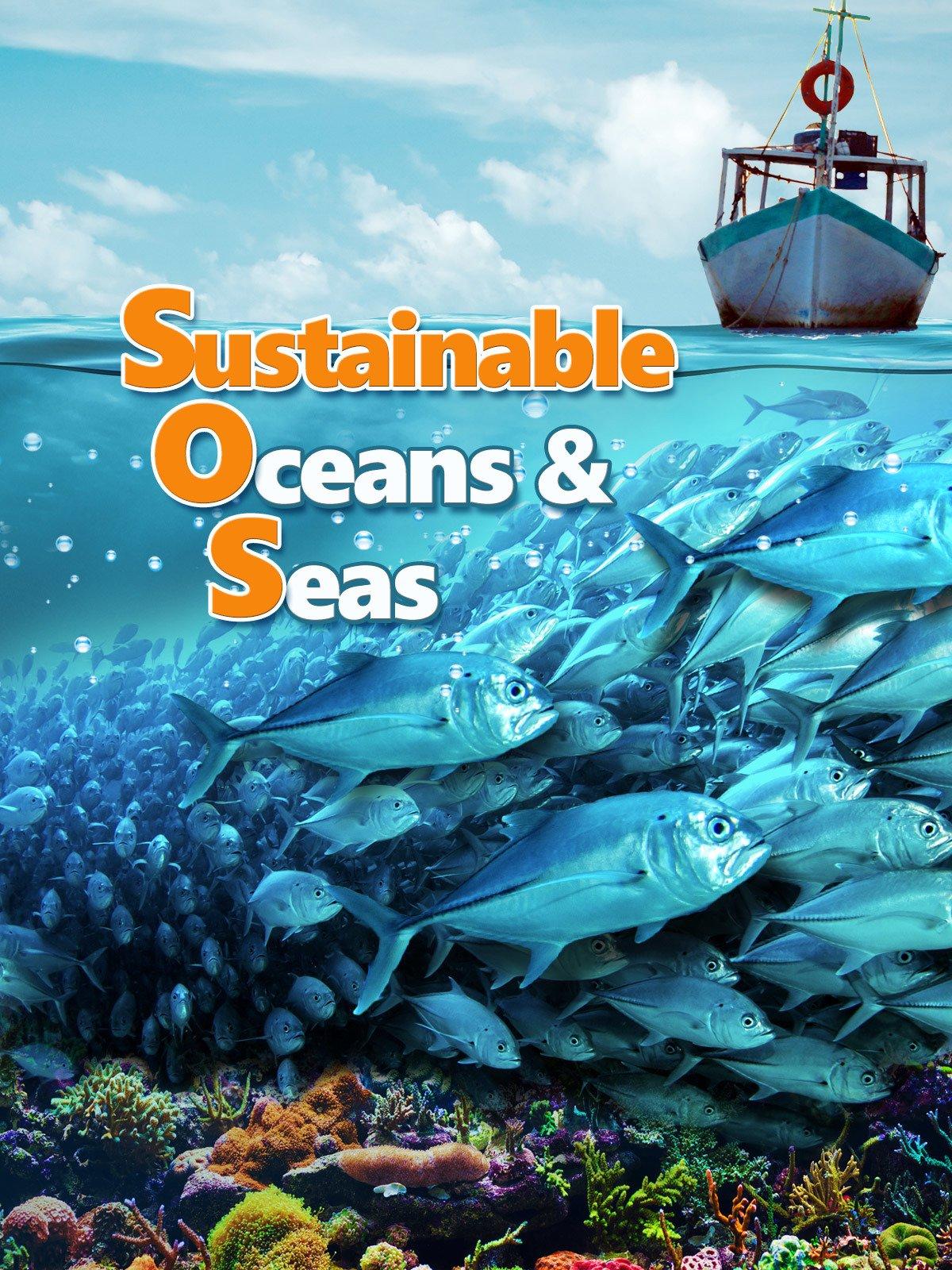 Sustainable Oceans & Seas