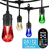 Enbrighten Vintage Seasons LED Warm White & Color Changing Café String Lights, Black, 24ft., 12 Premium Impact Resistant Lifetime Bulbs, Wireless, Weatherproof, Indoor/Outdoor, Commercial Grade, 37791 (Color: Black, Tamaño: 24 ft.)