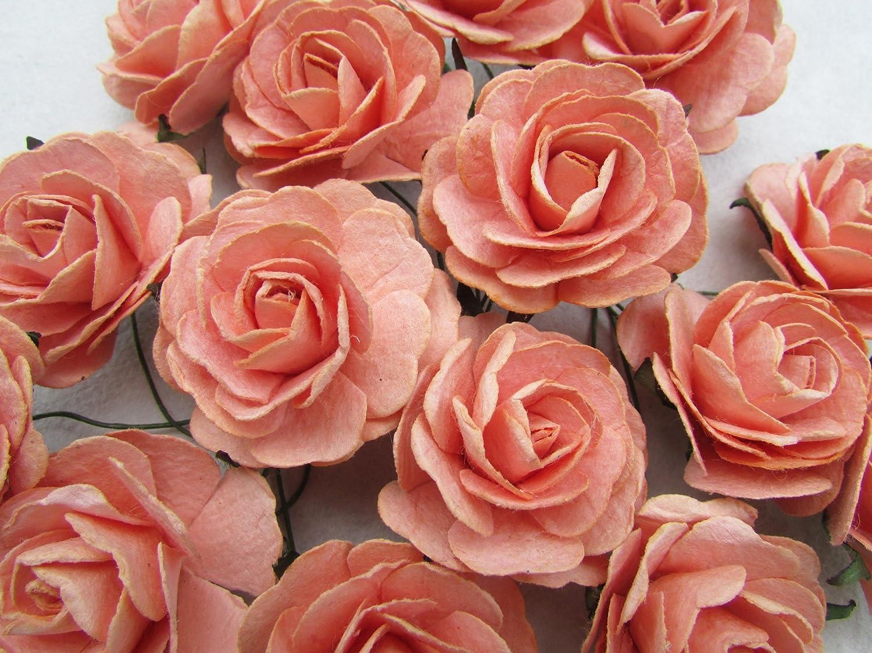 http://ecx.images-amazon.com/images/I/81wiCQ5A8NL._SL1500_.jpg