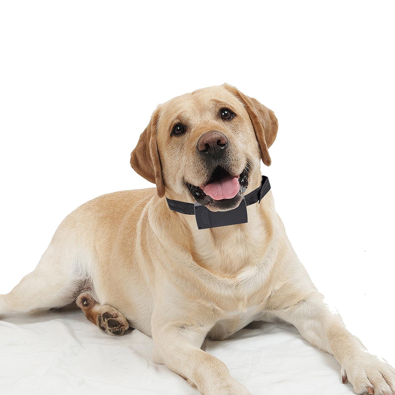 SySrion® Bark Dog Collar Training System, Electric No Bark Shock with 6 Adjustable Sensitivity Control with Manual - Premium Anti-bark Pet Dog Bark Collar for Small & Medium Dogs - Black