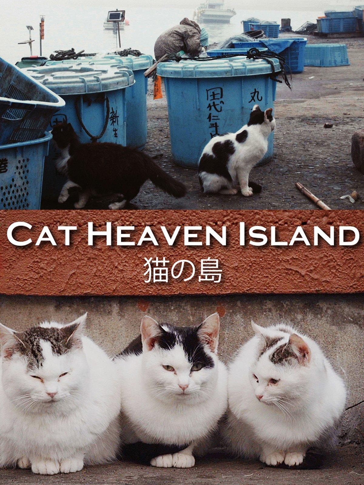 Cat Heaven Island