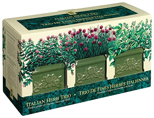 Garden at Home 42414 Italian Herb Trio