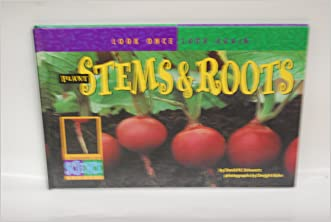Plant Stems & Roots (Look Once, Look Again: A Springboards Into Science Series) written by David M. Schwartz