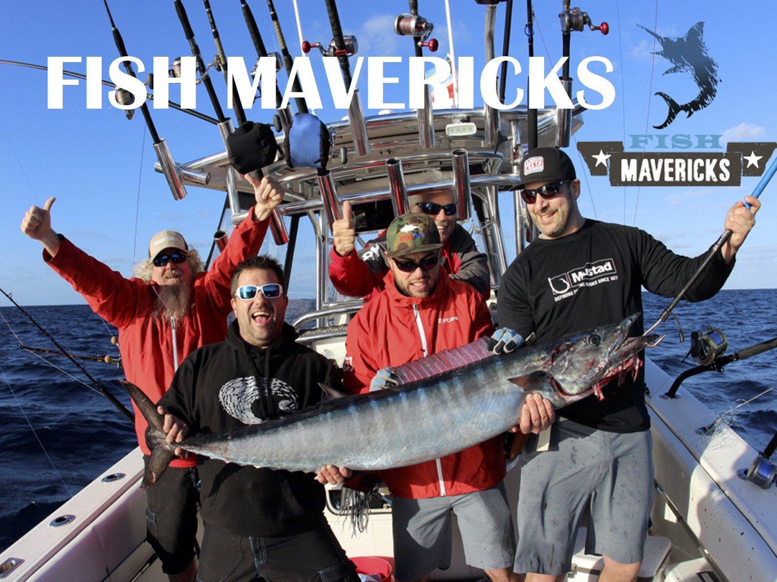 Fish Mavericks - Season 1