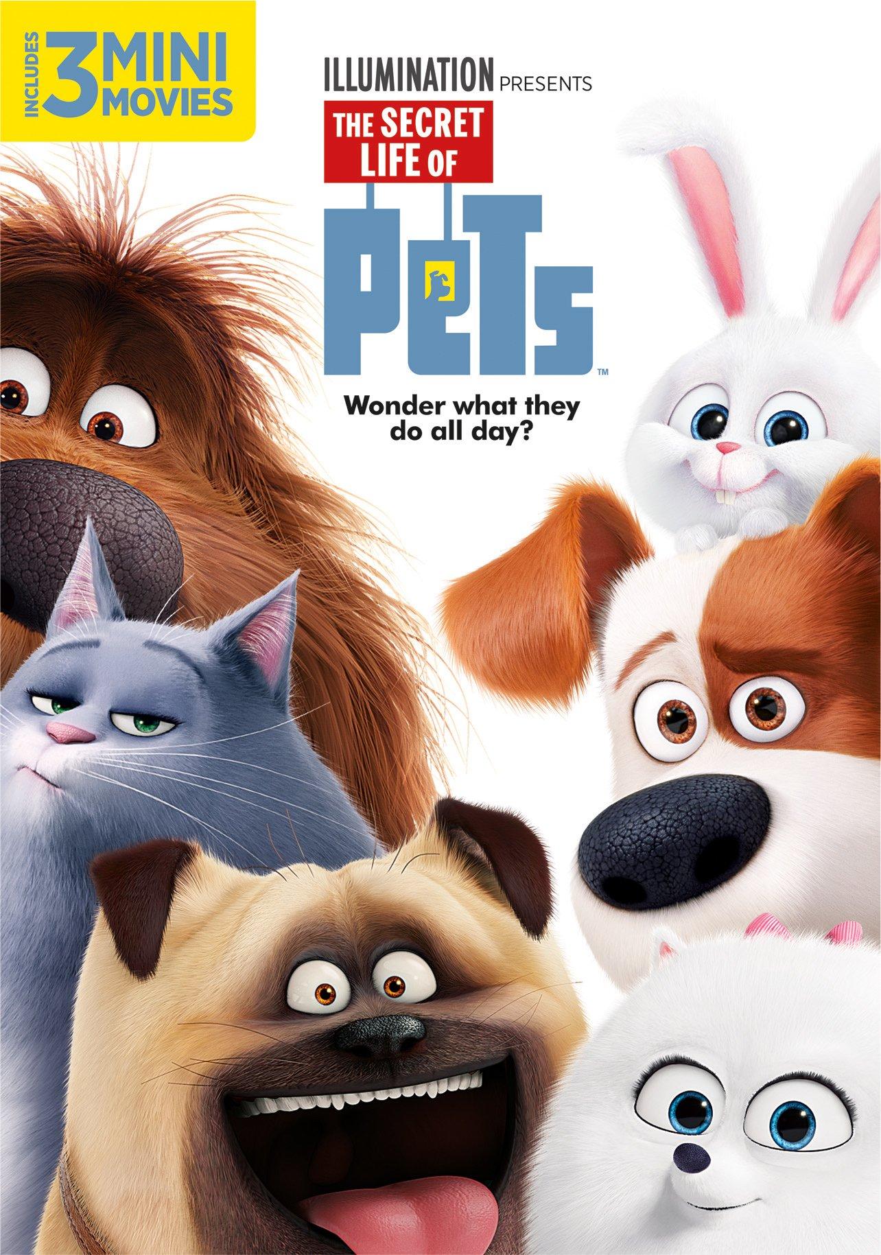 Buy Secret Life Of Pets Dvd Now!