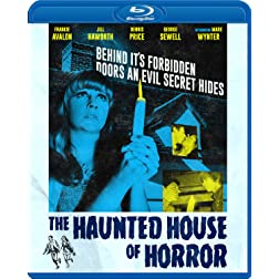Haunted House Of Horror [Blu-ray]