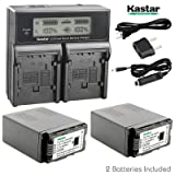 Kastar LCD Dual Smart Fast Charger & 2 x Battery for Panasonic VW-VBG6 VWVBG6 VBG6 Li-Ion Camcorder Battery and Panasonic AG-AC160A, AG-AC7, AG-AC130A, AG-AC160A, AG-HMC40, AG-HMC70, AG-HMC150 (Tamaño: 1 LCD dual charger + 2 batteries)