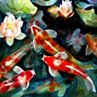 Koi wallpaper puzzle game