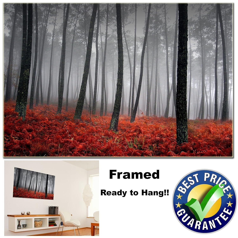Canvas Prints Framed Forest