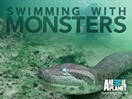 Swimming With Monsters Season 1