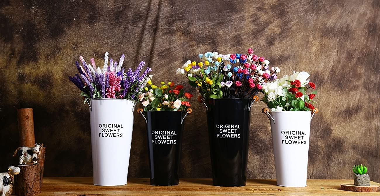 Pastoral Style Shabby Chic Larger Metal Pitcher Vase for Flowers Decoration (2, White) 1