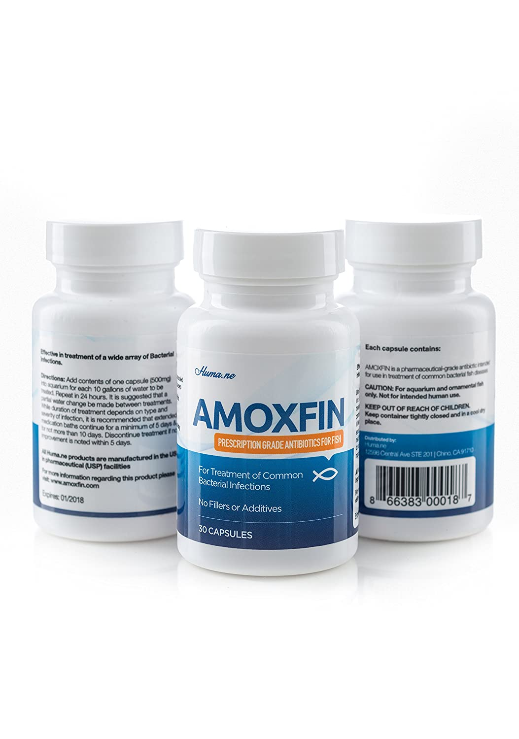 AMOXFIN® (500mg / 30 Capsules) for Fish