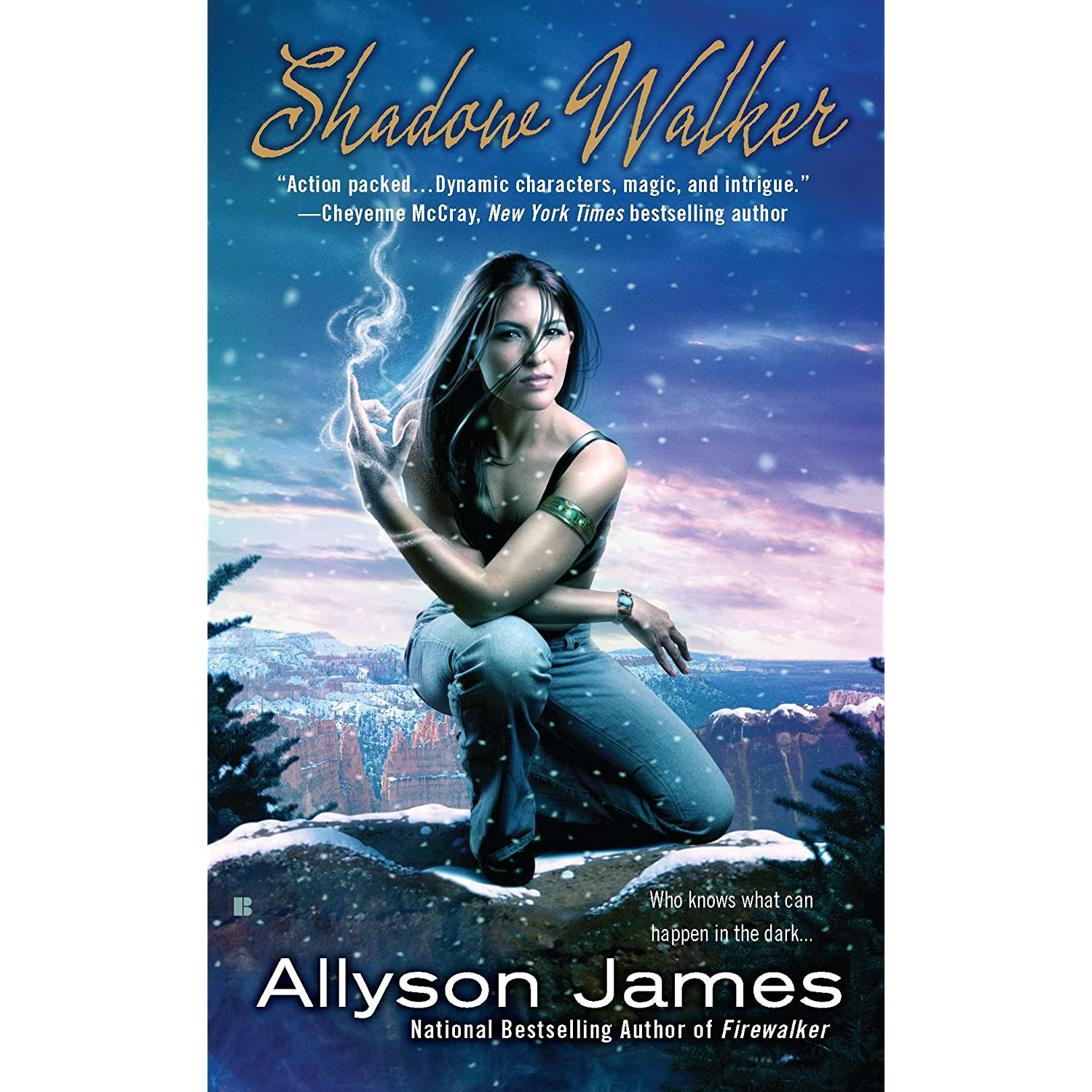 Shadow Walker (Stormwalker #3) - Allyson James