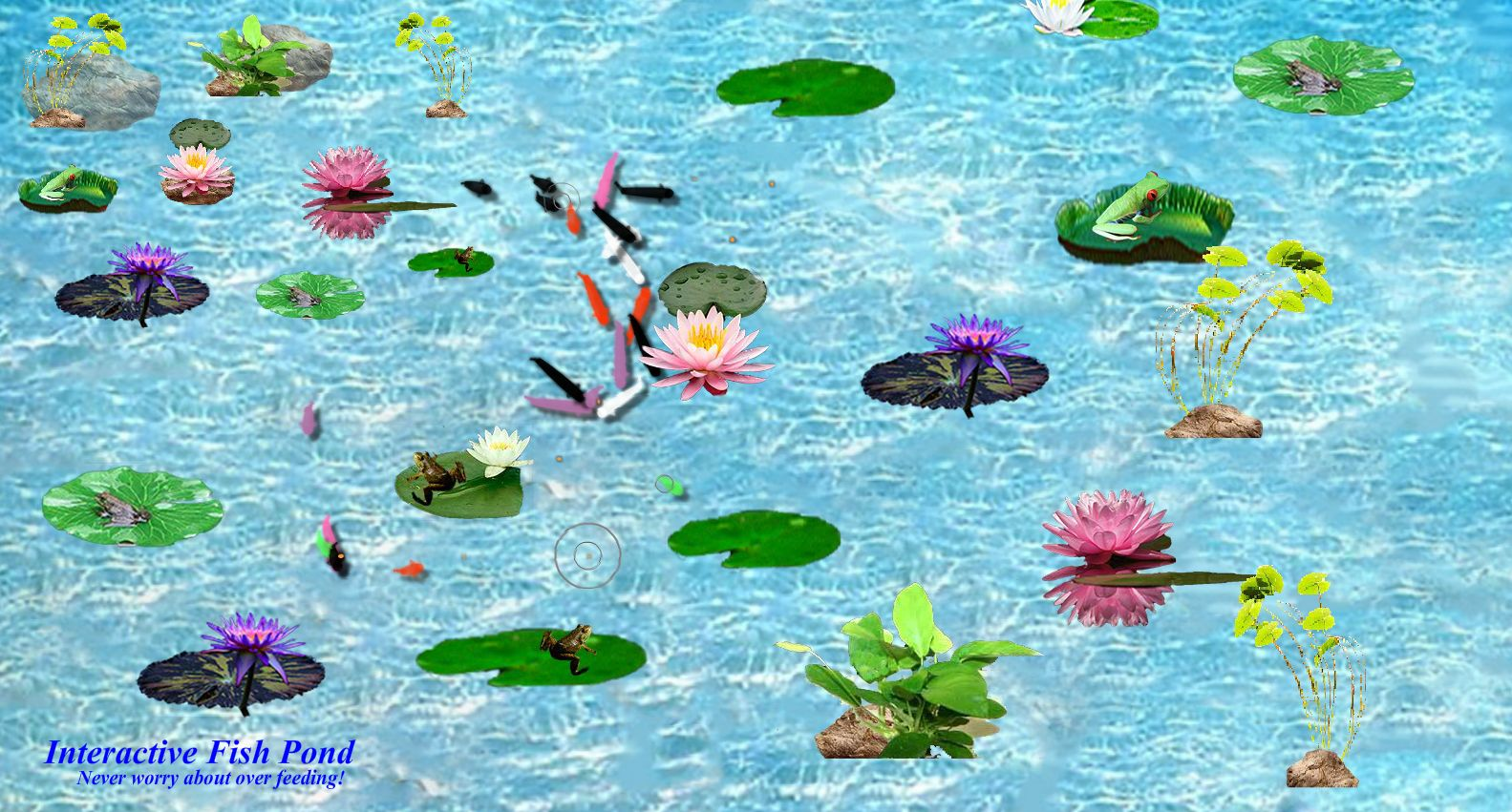 Live fish pond download 11street malaysia board games for Koi pond game online