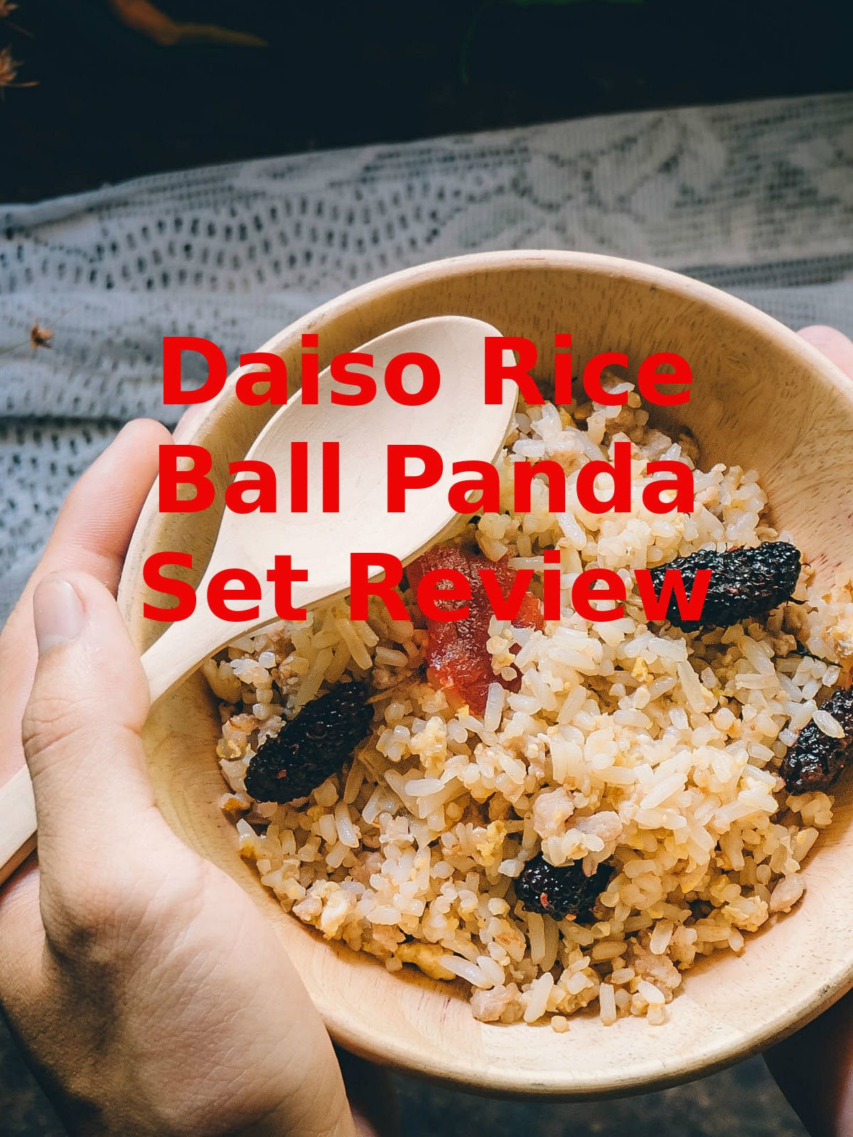 Review: Daiso Rice Ball Panda Set Review on Amazon Prime Video UK