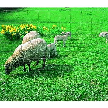 grillage mouton galvanis a 79 le rouleau de 50. Black Bedroom Furniture Sets. Home Design Ideas
