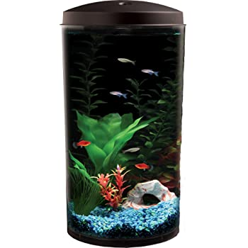 Best betta fish tanks 2017 reviews top picks for Betta fish tanks amazon