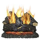 Pleasant Hearth VL-AA24D Arlington Ash Vented Gas Log Set, 55000 BTU, 24